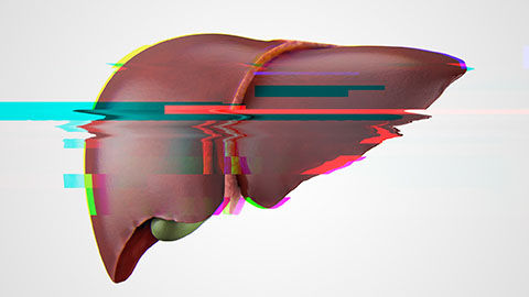 Computer graphic of a liver that is glitchy and distorted